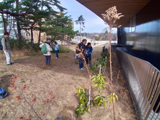 青葉の森3月観察会_f0100593_17032685.jpg
