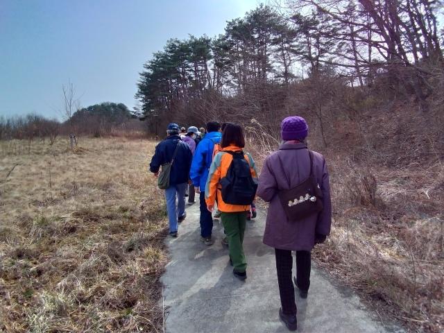 青葉の森3月観察会_f0100593_17040032.jpg