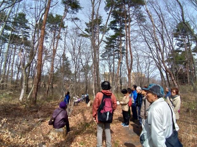 青葉の森3月観察会_f0100593_17044429.jpg