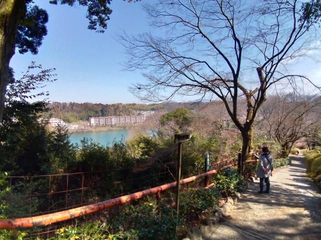 2019早春の京都と大津をめぐる (6) 石山寺に行き、山科で散歩する_f0100593_19125784.jpg