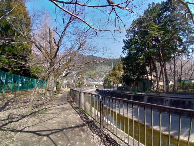2019早春の京都と大津をめぐる (6) 石山寺に行き、山科で散歩する_f0100593_19145030.jpg