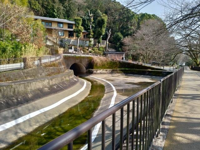 2019早春の京都と大津をめぐる (6) 石山寺に行き、山科で散歩する_f0100593_19154430.jpg