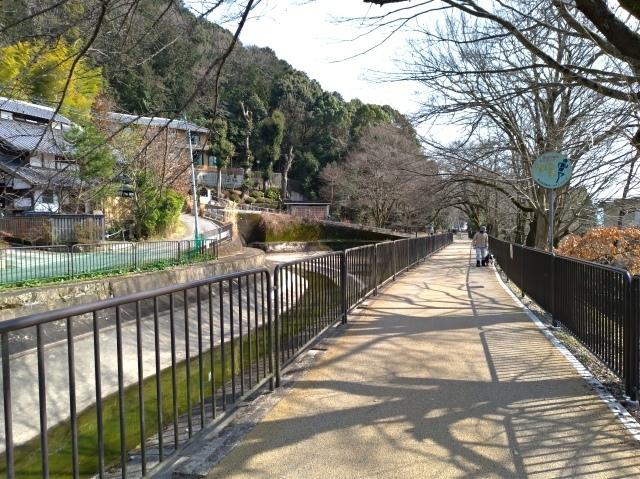 2019早春の京都と大津をめぐる (6) 石山寺に行き、山科で散歩する_f0100593_19155308.jpg