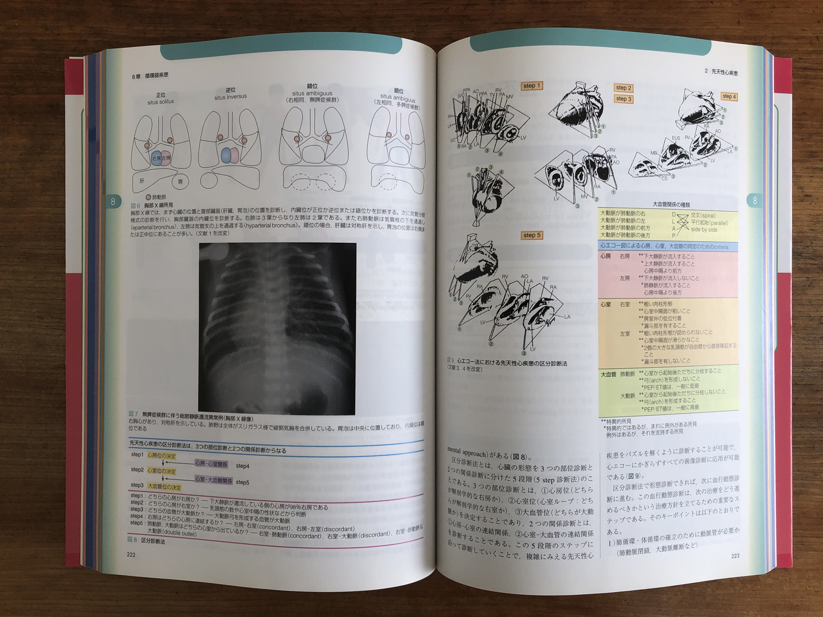 字典と専門書_e0367501_15151252.jpg