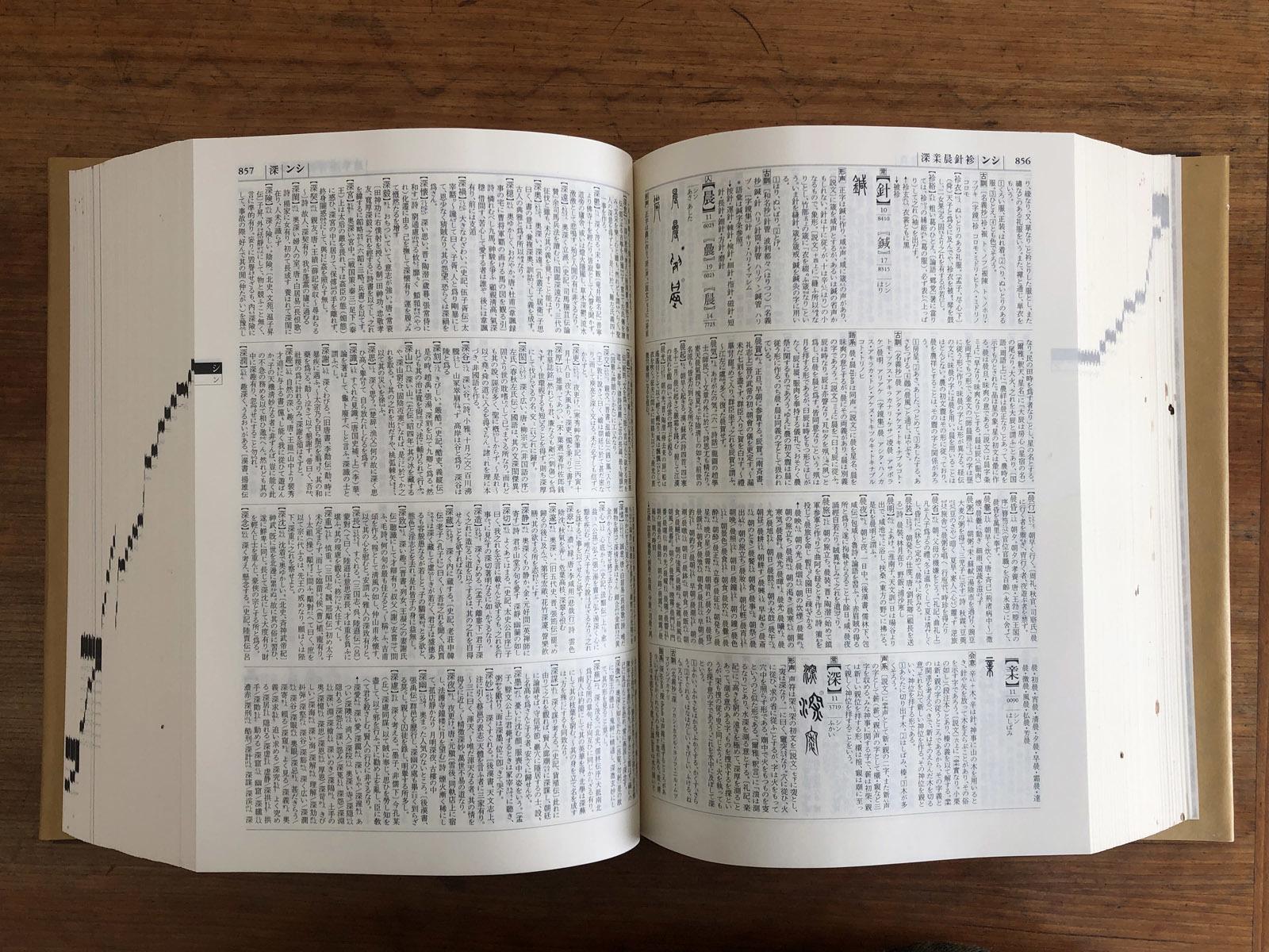 字典と専門書_e0367501_15164040.jpg