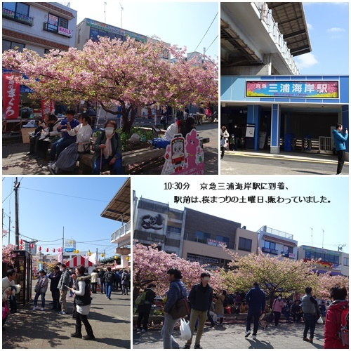 三浦海岸へお花見と、ウォーキング_c0051105_20422737.jpg