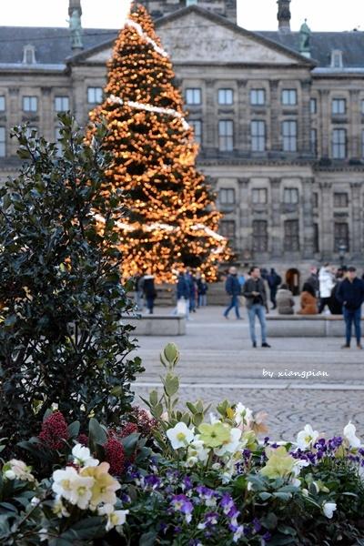 クリスマスのアムステルダム_a0153807_06161827.jpg