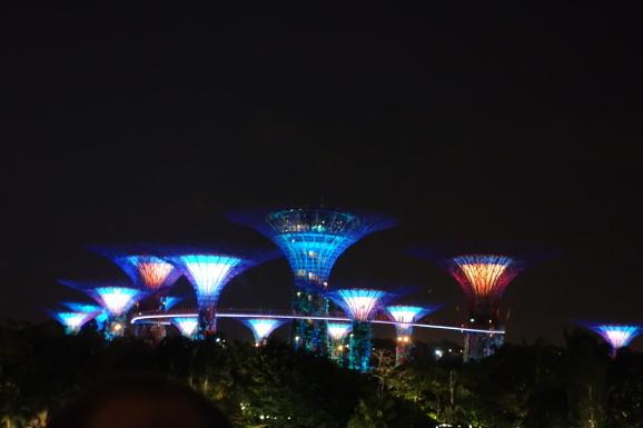 シンガポール2019  ラサプーラ・マスターズで夕ご飯_e0230011_17102198.jpg