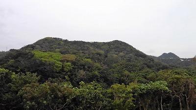 サンゴ礁の磯観察講座_c0180460_23525470.jpg