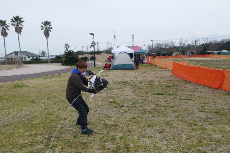 袖ヶ浦海浜公園  3月10日 [日]_e0018604_13274565.jpg