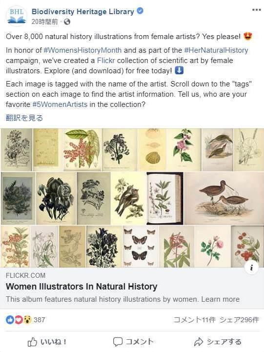 女性イラストレーターによる自然史アートの貢献_c0025115_21291491.jpg