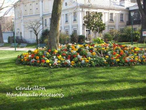 パリの花壇のお花は身近なお花♪_d0265249_04550348.jpg