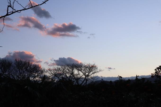 春の足音   朝です_b0239402_07013068.jpg