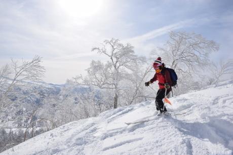 2019年2月3日快晴の大雪山旭岳で粉雪と戯れる_c0242406_09590933.jpg