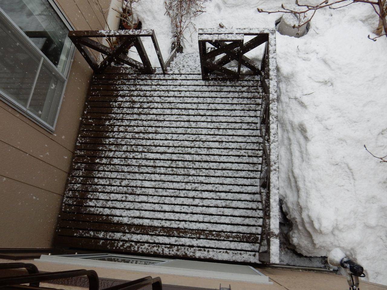 雪になりました_c0025115_21144916.jpg