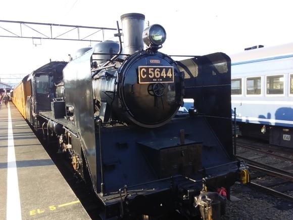 大井鉄道SLツアーの旅_d0116059_21041529.jpg