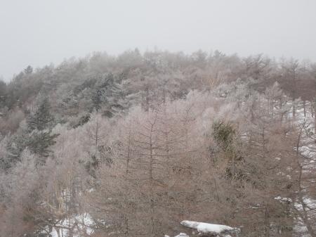 霧氷の朝_e0120896_10110116.jpg