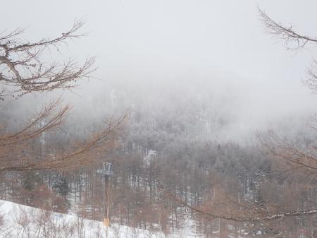 霧氷の朝_e0120896_10115271.jpg