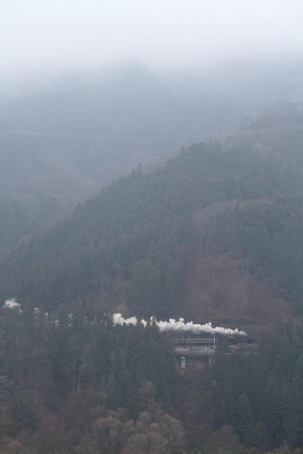 雨に白く霞む山と白煙 - 2019年晩冬・秩父 -_b0190710_23031053.jpg