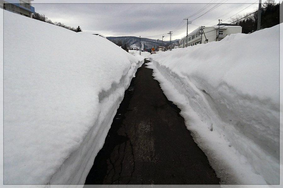 冬季開催は今年がラスト!_e0235910_10015145.jpg