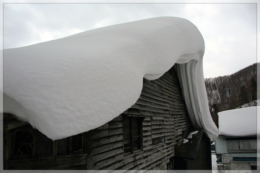 冬季開催は今年がラスト!_e0235910_10134761.jpg