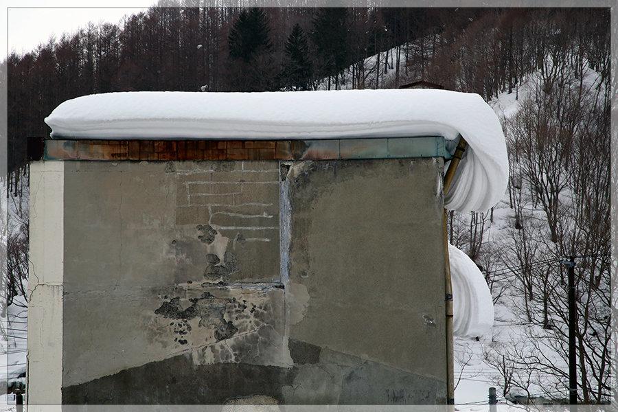 冬季開催は今年がラスト!_e0235910_10154437.jpg