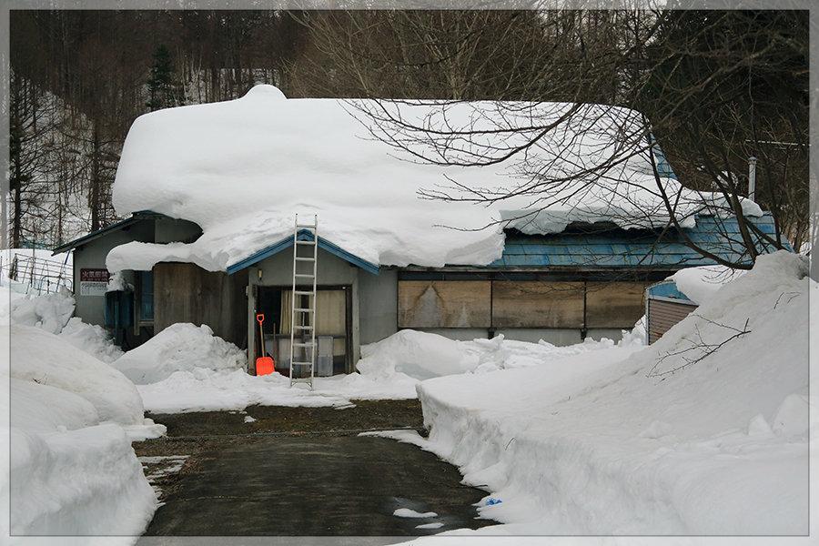 冬季開催は今年がラスト!_e0235910_10291895.jpg