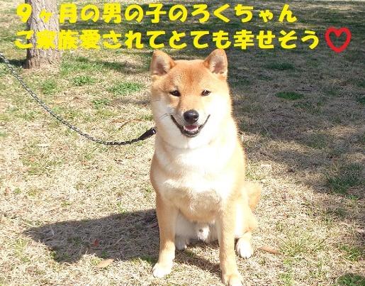 f0121712_23404936.jpg