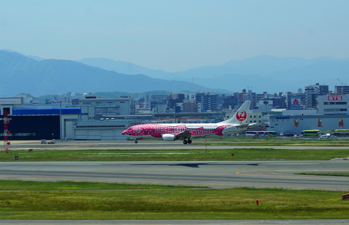 日本トランスオーシャン。_b0044115_08311345.jpg