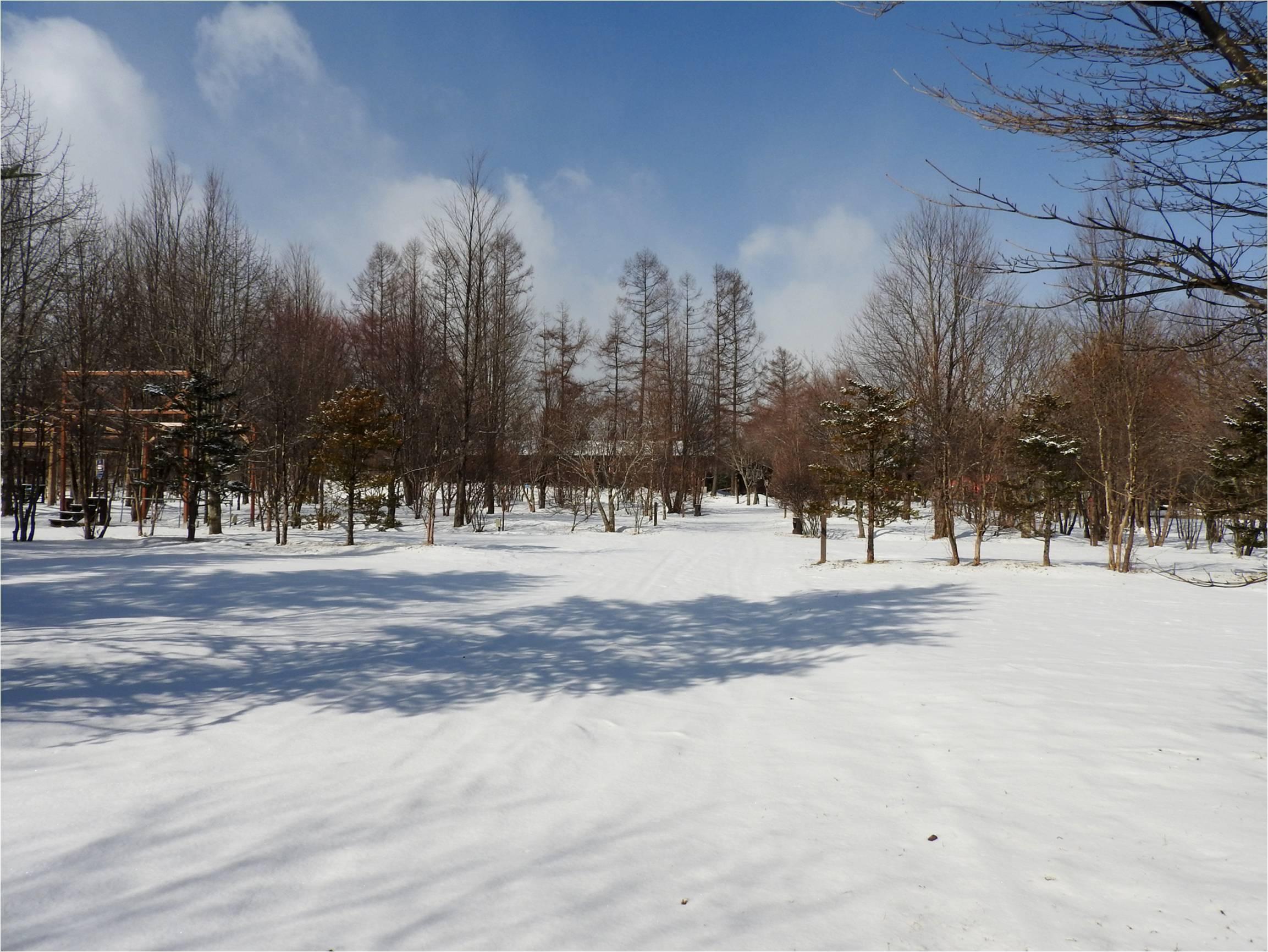 今週末の天気と気温(2019年3月14日):まだまだ冬タイヤ必須です_b0174425_12283764.jpg