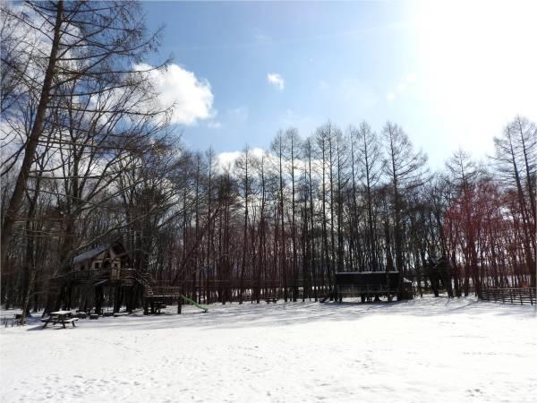 今週末の天気と気温(2019年3月14日):まだまだ冬タイヤ必須です_b0174425_12284345.jpg