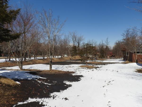 今週末の天気と気温(2019年3月14日):まだまだ冬タイヤ必須です_b0174425_14224114.jpg