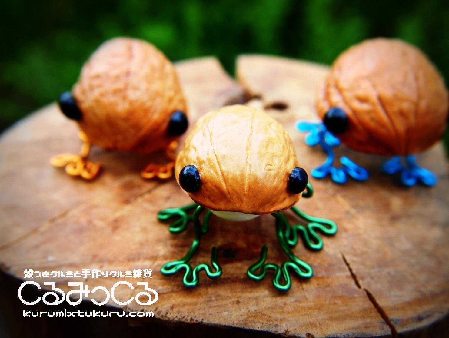 クルミのカエル くるっケロ_c0363428_14531324.jpg