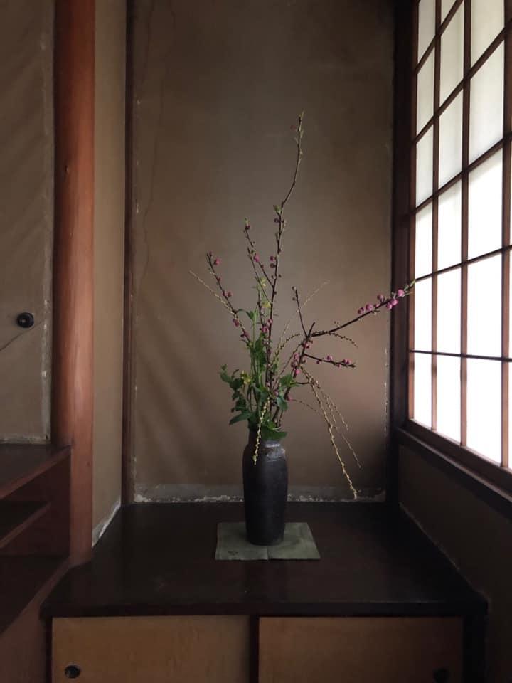 邸内に生けられた花 3月_d0344754_19294710.jpg