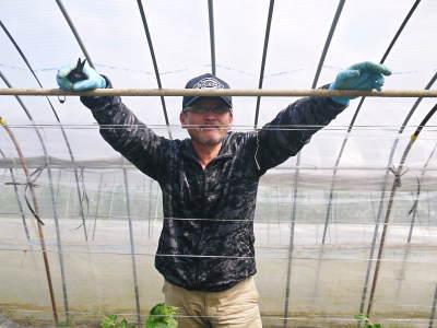 """スナップエンドウ「シャキ甘""""菊光""""」 平成31年は3月下旬からの出荷予定!現在の栽培地の様子を現地取材!_a0254656_17404331.jpg"""