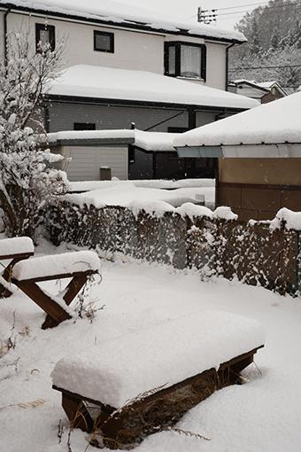 春の雪_b0259218_00101660.jpg