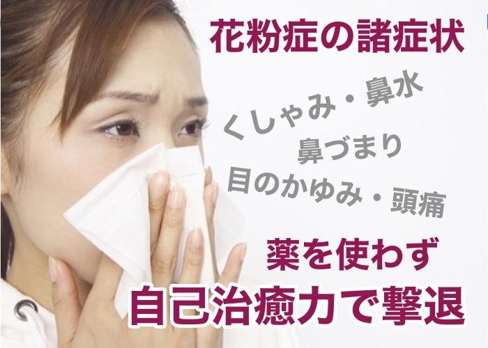 花粉症の薬とバイバイするには_a0119931_17230580.jpg