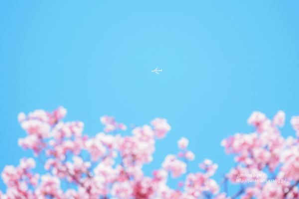 あの空から_e0268051_22590771.jpg
