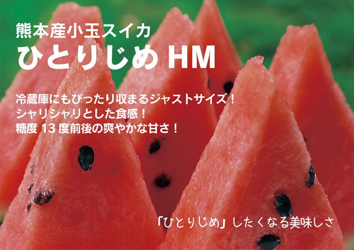 夢スイカ 令和2年の熊本産小玉スイカ「ひとりじめHM」明日12時より先行予約受付をスタートです!!_a0254656_17124007.jpg