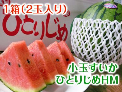 夢スイカ 令和2年の熊本産小玉スイカ「ひとりじめHM」明日12時より先行予約受付をスタートです!!_a0254656_17363525.jpg