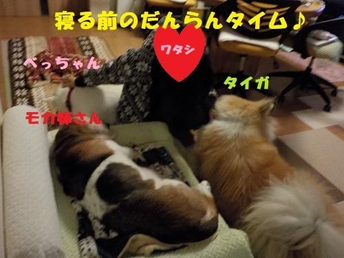 f0121712_22514001.jpg