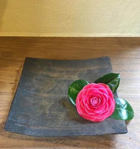 春はもうすぐ、沈丁花が花盛り_a0197730_02013502.jpg