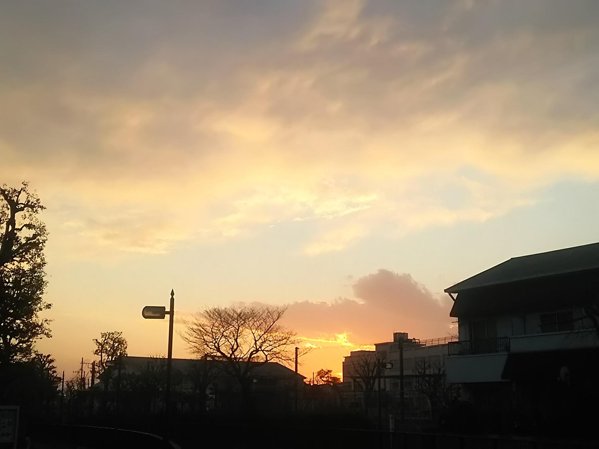 春の風_c0076939_20534415.jpg