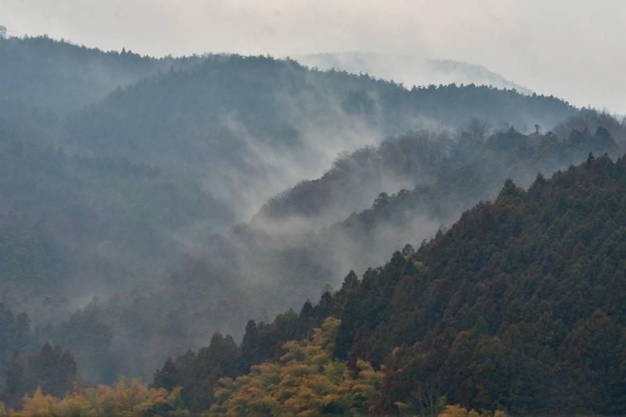 のぼる霧_b0223668_08331264.jpg