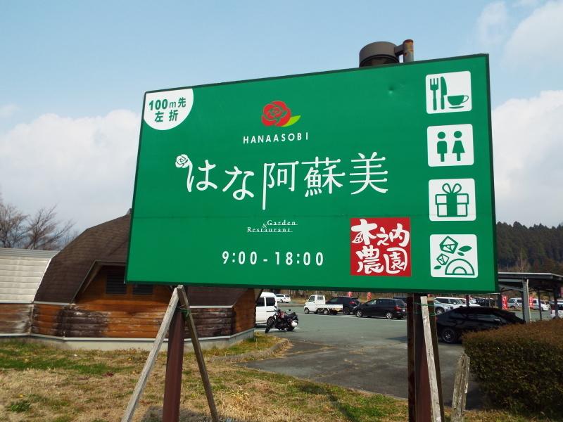 阿蘇高菜を摘みに内牧へ行ってきました_c0329378_23171854.jpg