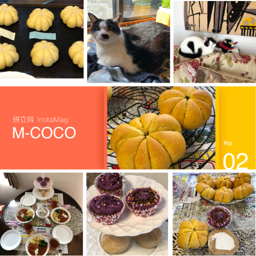 M-COCO3月リクエストレッスン『ふんわりかぼちゃぱん』_e0159185_19132173.jpeg