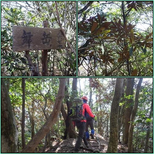 やまびこ会オフ会・・多良岳のはずが経ヶ岳へ_e0164643_16412632.jpg