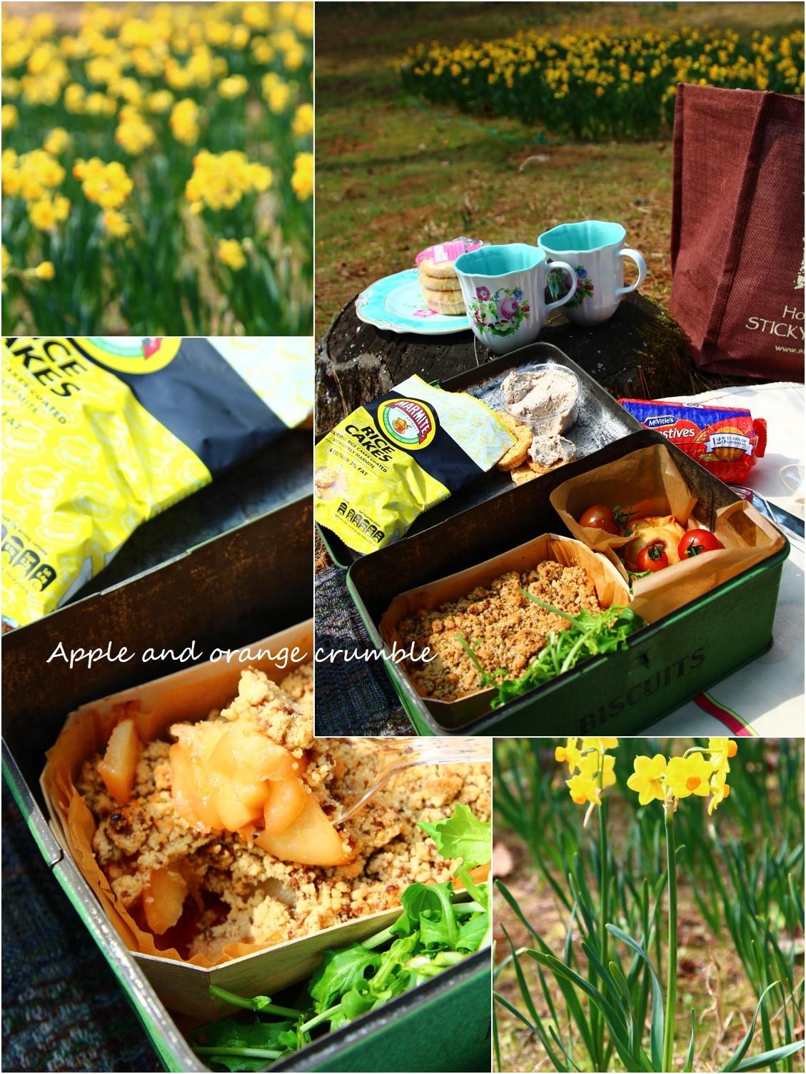 Daffodil picnic_a0107981_23023584.jpg