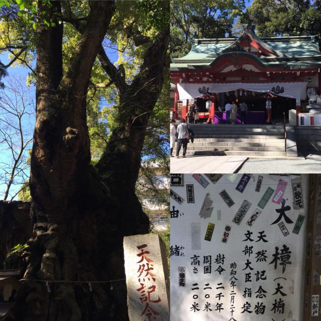 2019年春の日本滞在記 最後に_f0095325_01271719.jpg