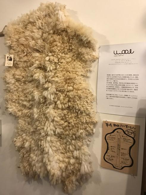 いわての農村と伝統を守り育てる 〜いわてのウール i-wool 〜_b0199244_15373487.jpg